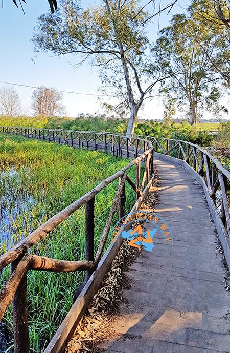Il Libero Consorzio Comunale sta predisponendo dei progetti per rendere maggiormente fruibile la riserva Ciane-Saline